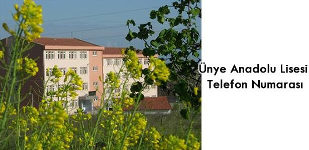 Ünye Anadolu Lisesi